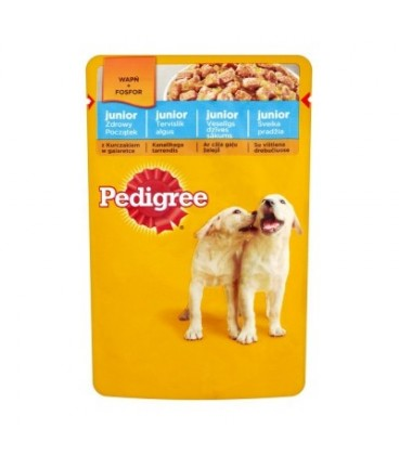 Pedigree junior kurczak w galaretce 100g