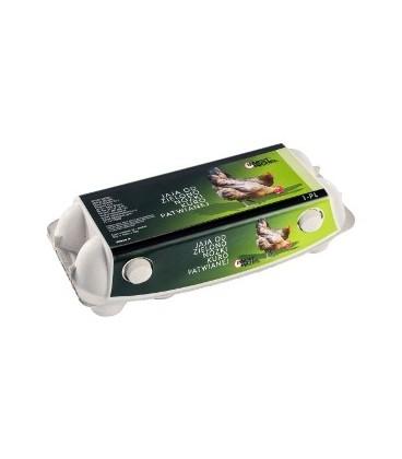 Invest Jaja od zielononóżki kuropatwianej M10szt
