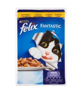 Felix Fantastic z kurczakiem w galaretce Pełnoporcjowa karma dla kotów 100 g