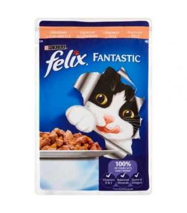 Felix Fantastic z łososiem w galaretce Pełnoporcjowa karma dla kotów 100 g