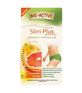 Big-Active Slim Plus Anti YoYo Suplement diety Herbatka ziołowo-owocowa 40 g (20 torebek)