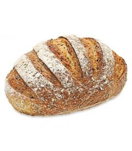 Grzybek Chleb dobrodziej jaglany